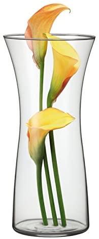 váza ROSE WAZON 30cm, d14,2 sklo SIMAX