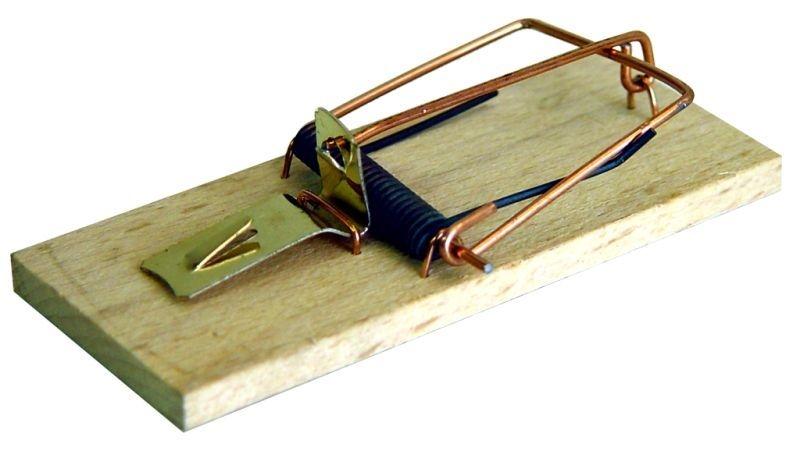 past na myši dřevo CZ (1ks) 801D/S /35/