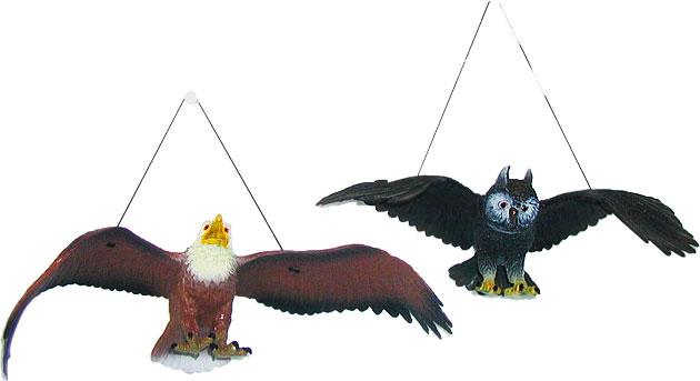 Orel / sova 38 cm 2 druhy